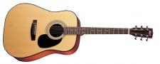 Cort AD 880 NS - akustická gitara