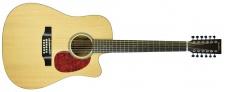 BaCH DC70SED 12str - Dvanáctistrunná kytara