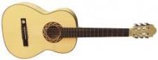 Pro Natura Silver 220 - gitara 7/8