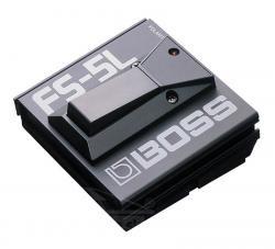 Roland FS 5 L