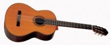 Esteve PS 75 - klasická kontrabasová gitara + kufor